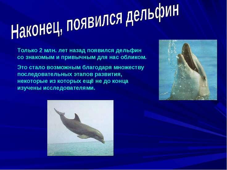 Только 2 млн. лет назад появился дельфин со знакомым и привычным для нас обли...
