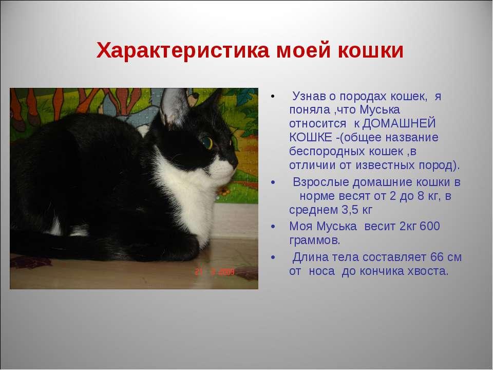 Характеристика моей кошки Узнав о породах кошек, я поняла ,что Муська относит...