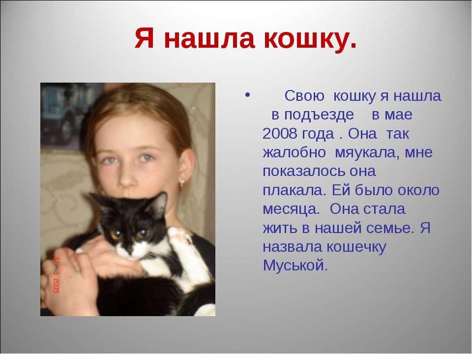 Я нашла кошку. Свою кошку я нашла в подъезде в мае 2008 года . Она так жалобн...