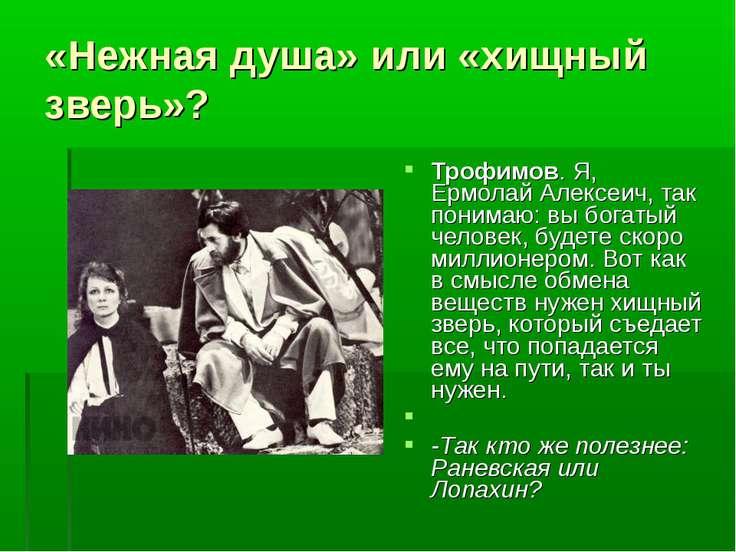 «Нежная душа» или «хищный зверь»? Трофимов. Я, Ермолай Алексеич, так понимаю:...