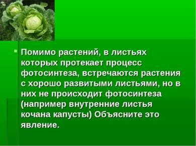 Помимо растений, в листьях которых протекает процесс фотосинтеза, встречаются...
