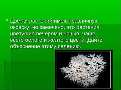 Цветки растений имеют различную окраску, но замечено, что растения, цветущие ...