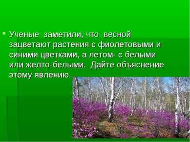 Ученые заметили, что весной зацветают растения с фиолетовыми и синими цветкам...