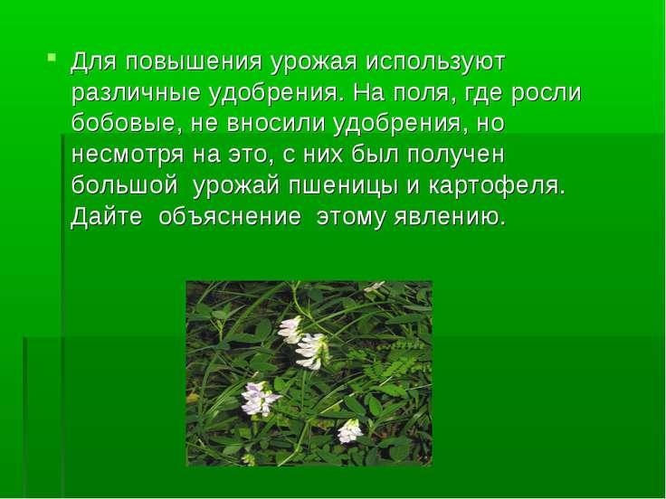 Для повышения урожая используют различные удобрения. На поля, где росли бобов...