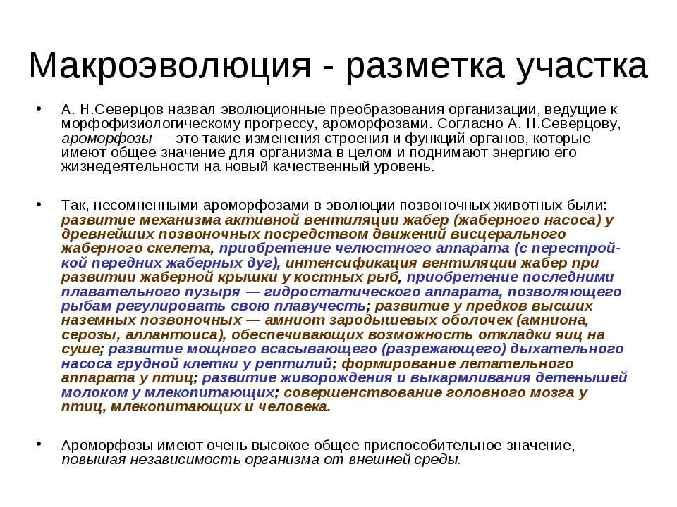 Макроэволюция - разметка участка А. Н.Северцов назвал эволюционные преобразов...