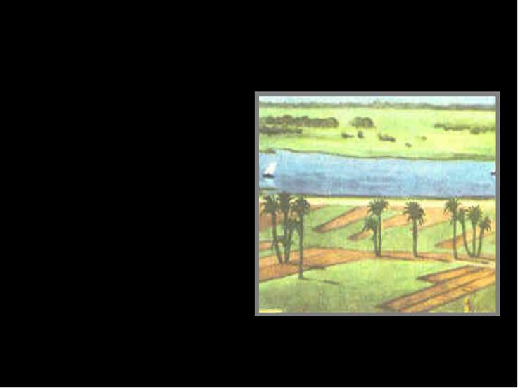Дождь в жизни человека (Исторический факт) Загадка летнего разлива Нила в Еги...