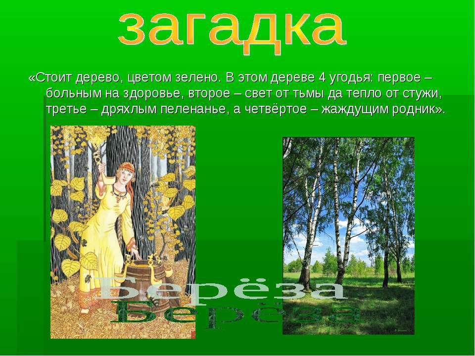 «Стоит дерево, цветом зелено. В этом дереве 4 угодья: первое – больным на здо...