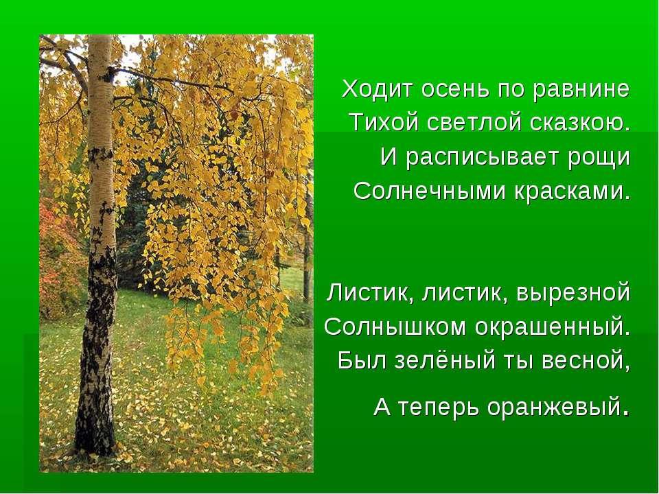Ходит осень по равнине Тихой светлой сказкою. И расписывает рощи Солнечными к...