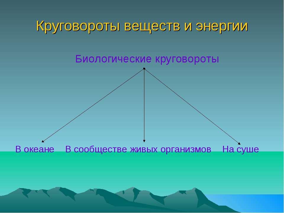 Круговороты веществ и энергии Биологические круговороты В океане В сообществе...