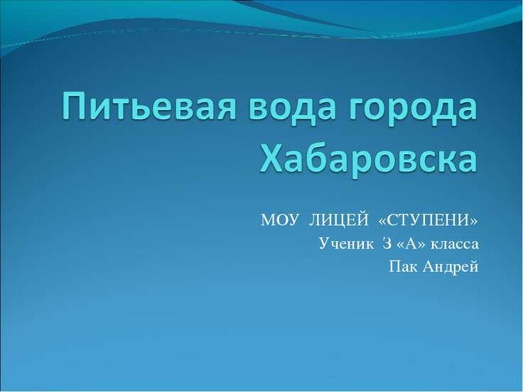 МОУ ЛИЦЕЙ «СТУПЕНИ» Ученик З «А» класса Пак Андрей