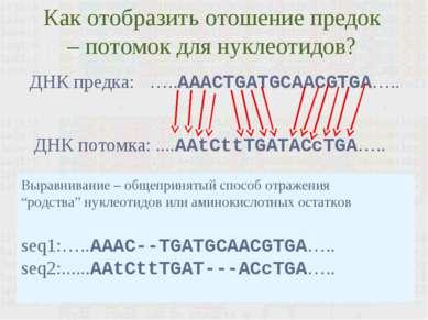 Как отобразить отошение предок – потомок для нуклеотидов? Выравнивание – обще...