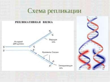 Схема репликации