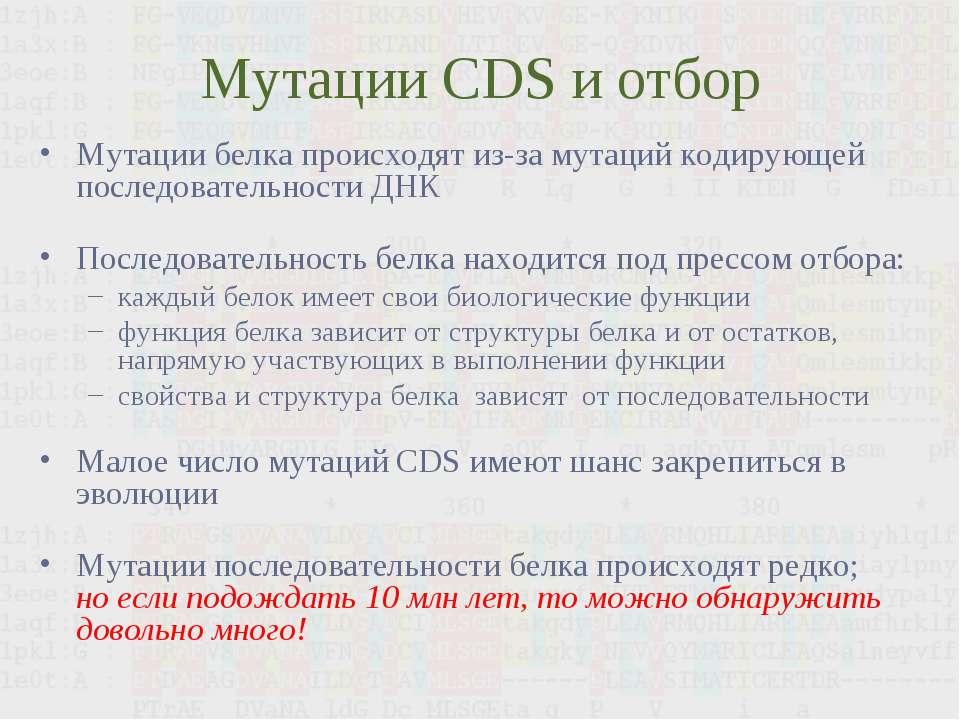 Мутации CDS и отбор Мутации белка происходят из-за мутаций кодирующей последо...