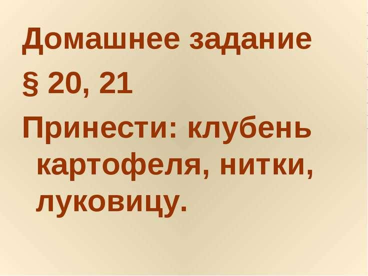 Домашнее задание § 20, 21 Принести: клубень картофеля, нитки, луковицу.