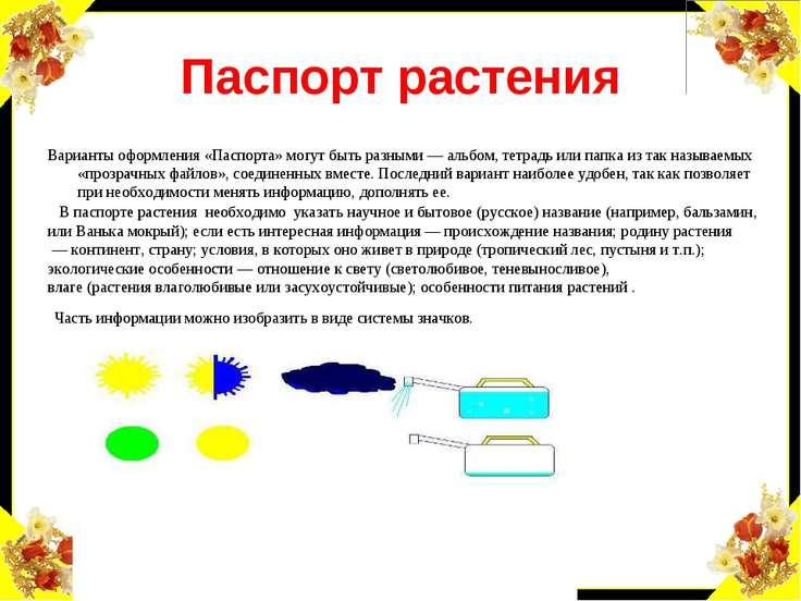 Паспорт растения Варианты оформления «Паспорта» могут быть разными — альбом, ...