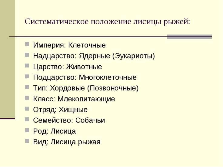 Систематическое положение лисицы рыжей: Империя: Клеточные Надцарство: Ядерны...