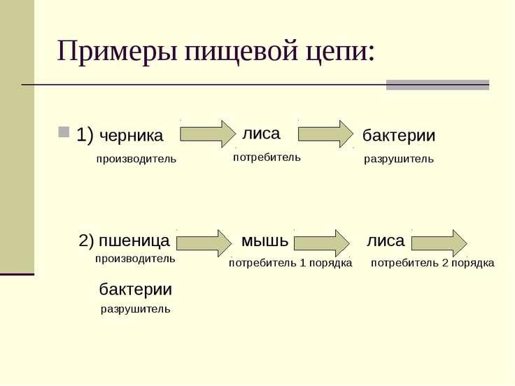 Примеры пищевой цепи: 1) черника лиса бактерии производитель потребитель разр...