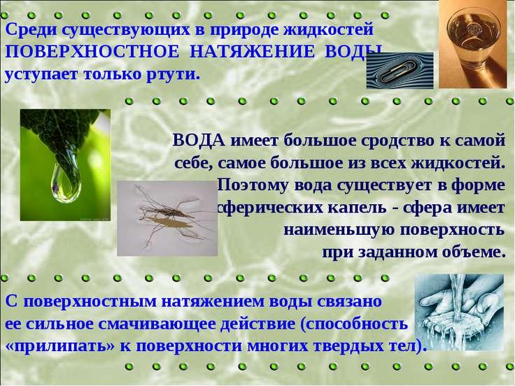 Среди существующих в природе жидкостей ПОВЕРХНОСТНОЕ НАТЯЖЕНИЕ ВОДЫ уступает ...