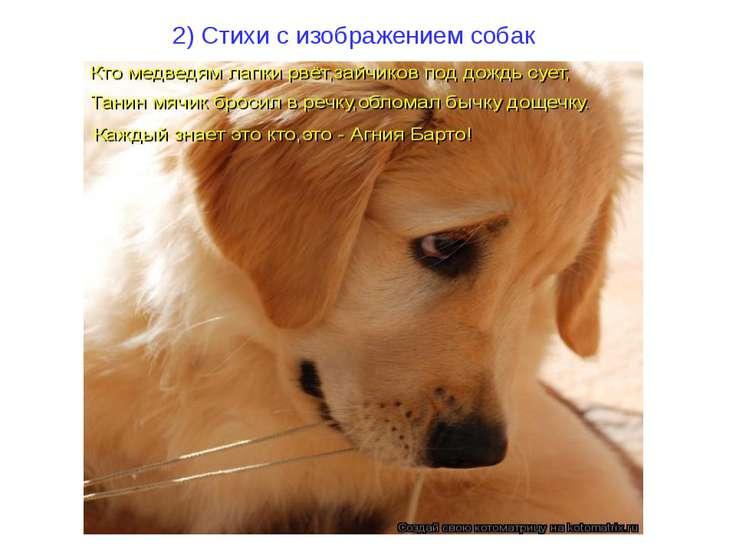 2) Стихи с изображением собак