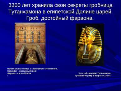 3300 лет хранила свои секреты гробница Тутанхамона в египетской Долине царей....