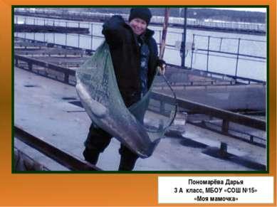 Пономарёва Дарья 3 А класс, МБОУ «СОШ №15» «Моя мамочка»