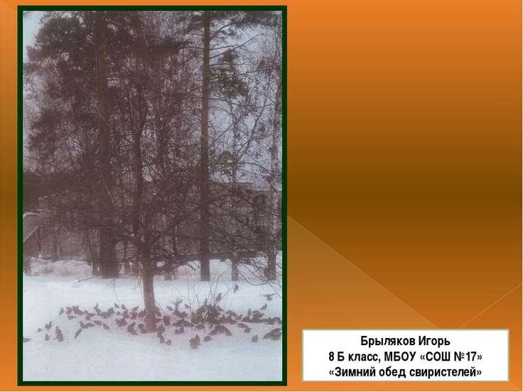 Брыляков Игорь 8 Б класс, МБОУ «СОШ №17» «Зимний обед свиристелей»