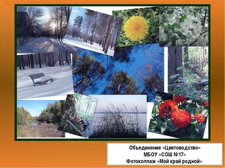 Объединение «Цветоводство» МБОУ «СОШ №17» Фотоколлаж «Мой край родной»