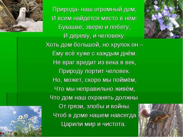Природа- наш огромный дом, И всем найдется место в нём: Букашке, зверю и побе...