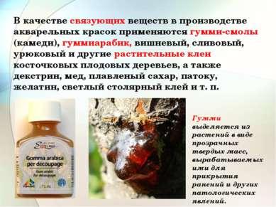 В качестве связующих веществ в производстве акварельных красок применяются гу...