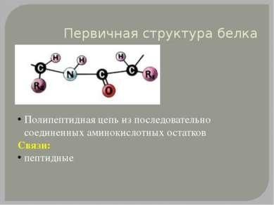 Первичная структура белка Полипептидная цепь из последовательно соединенных а...
