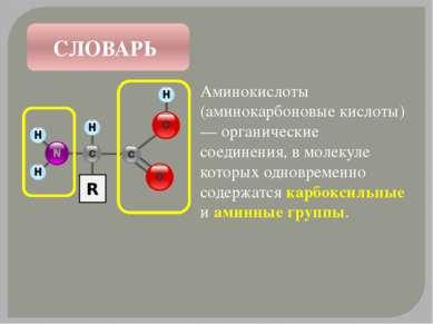 СЛОВАРЬ Аминокислоты (аминокарбоновые кислоты) — органические соединения, в м...