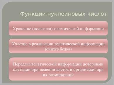 Функции нуклеиновых кислот Хранение (носители) генетической информации Участи...