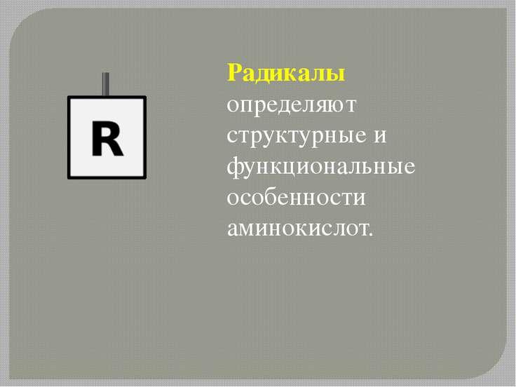 Радикалы определяют структурные и функциональные особенности аминокислот.
