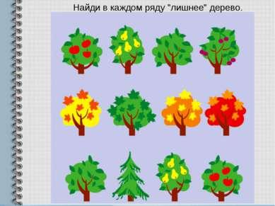 """Найди в каждом ряду """"лишнее"""" дерево."""