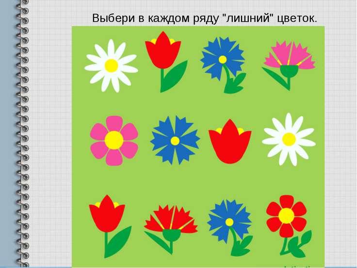 """Выбери в каждом ряду """"лишний"""" цветок."""