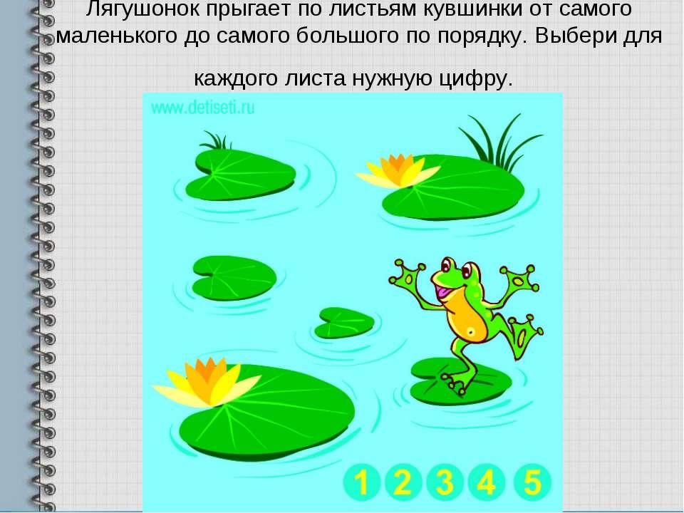 Лягушонок прыгает по листьям кувшинки от самого маленького до самого большого...