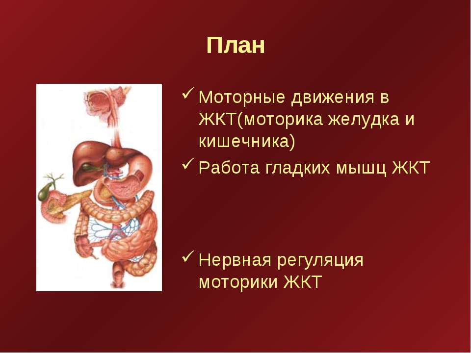 План Моторные движения в ЖКТ(моторика желудка и кишечника) Работа гладких мыш...