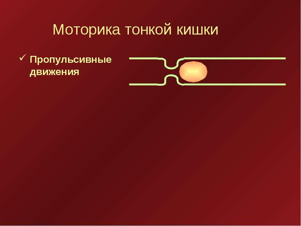 Моторика тонкой кишки Пропульсивные движения