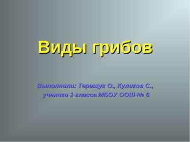 Виды грибов Выполнили: Терещук О., Куликов С., ученики 1 класса МБОУ ООШ № 6