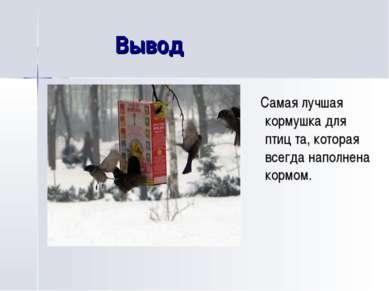 Вывод Самая лучшая кормушка для птиц та, которая всегда наполнена кормом.