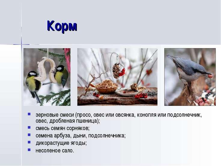 Корм зерновые смеси (просо, овес или овсянка, конопля или подсолнечник, овес,...
