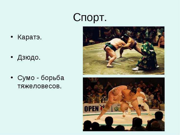Спорт. Каратэ. Дзюдо. Сумо - борьба тяжеловесов.