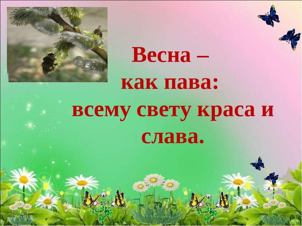 Весна – как пава: всему свету краса и слава.