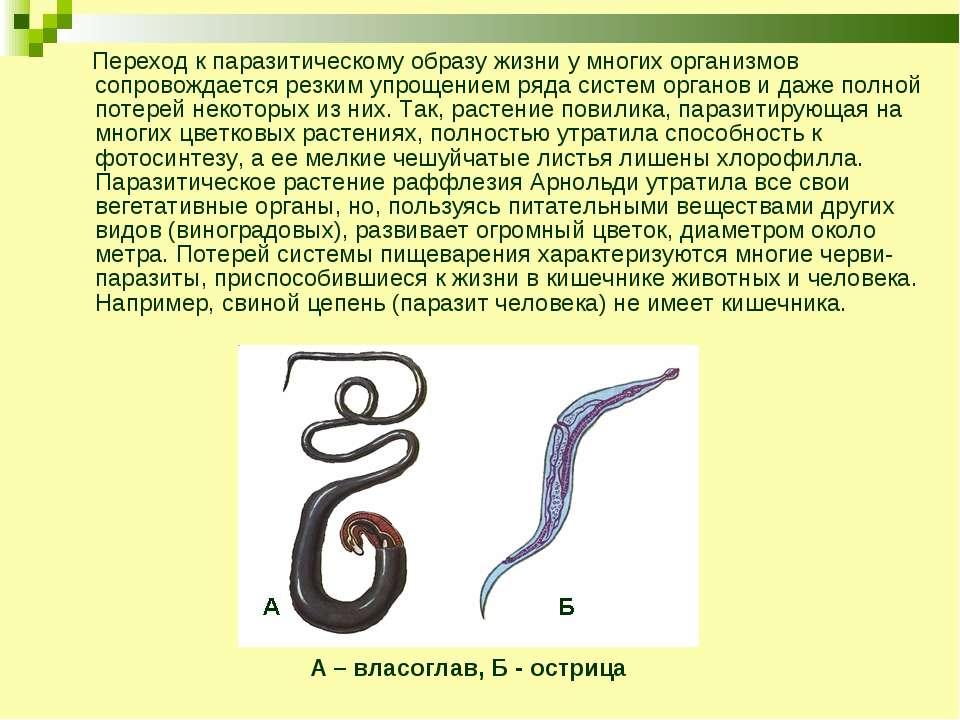 Переход к паразитическому образу жизни у многих организмов сопровождается рез...