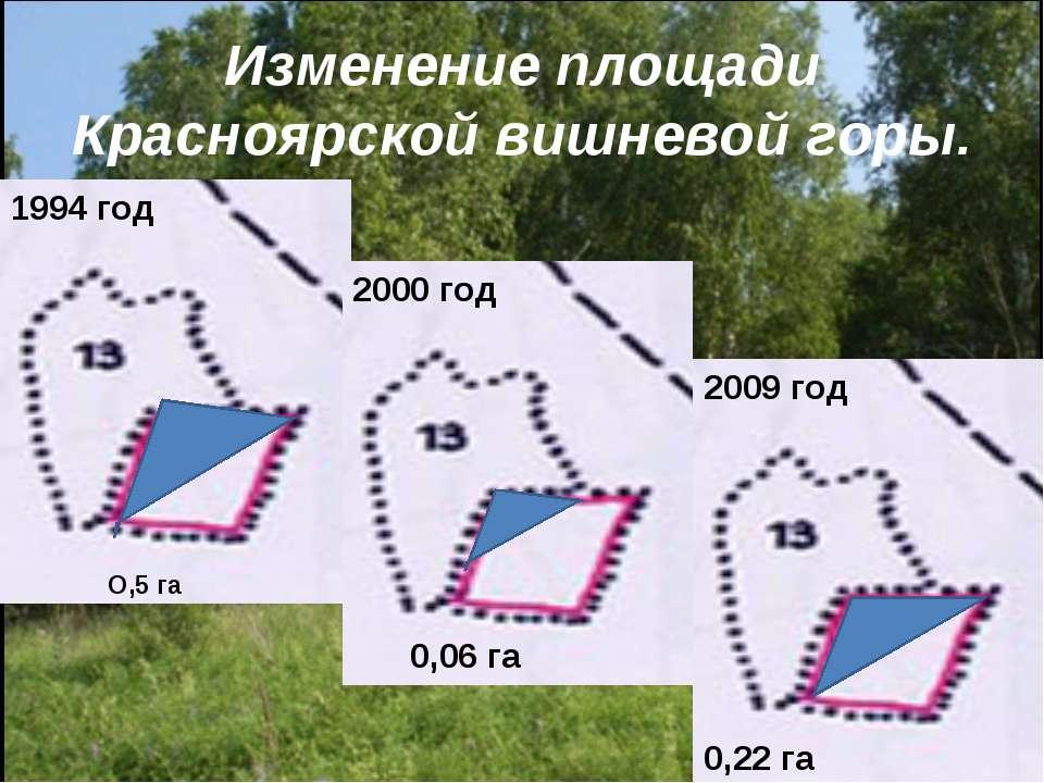 Изменение площади Красноярской вишневой горы. 1994 год 2000 год 2009 год 0,06...