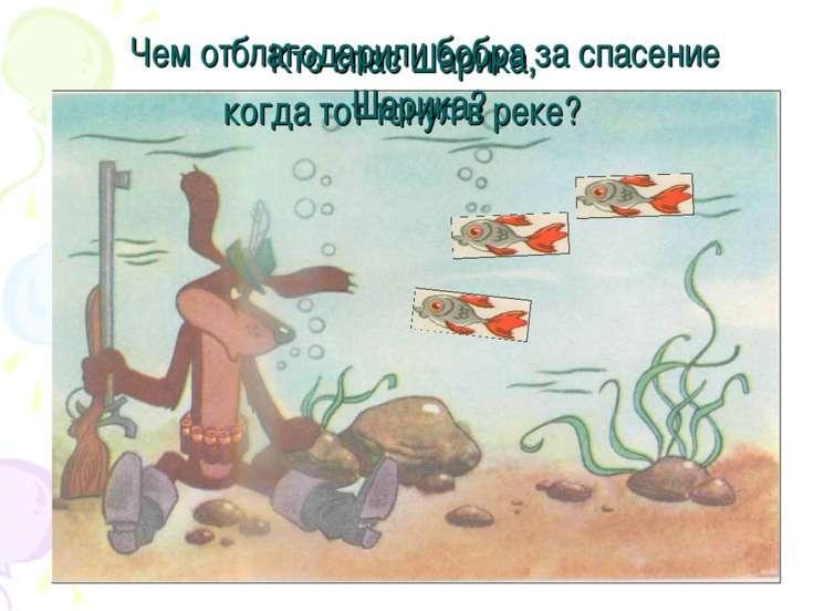 Кто спас Шарика, когда тот тонул в реке? Чем отблагодарили бобра за спасение ...