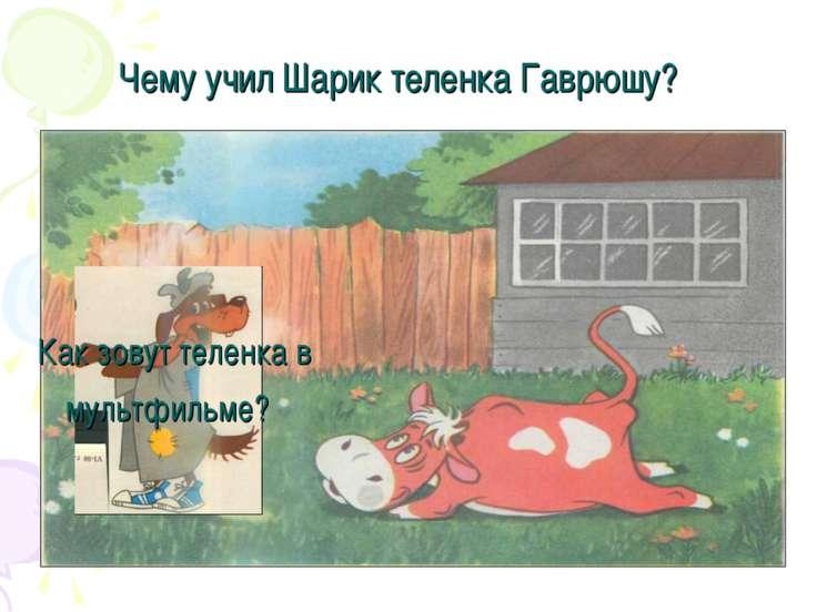 Как зовут теленка в мультфильме? Чему учил Шарик теленка Гаврюшу?