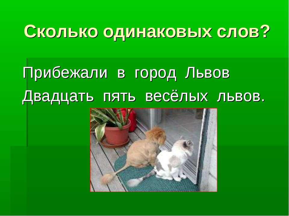 Сколько одинаковых слов? Прибежали в город Львов Двадцать пять весёлых львов.