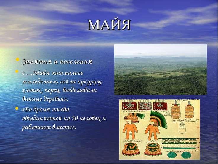 МАЙЯ Занятия и поселения « …Майя занимались земледелием, сеяли кукурузу, хлоп...