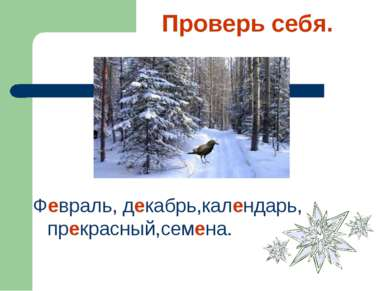 Проверь себя. Февраль, декабрь,календарь, прекрасный,семена.